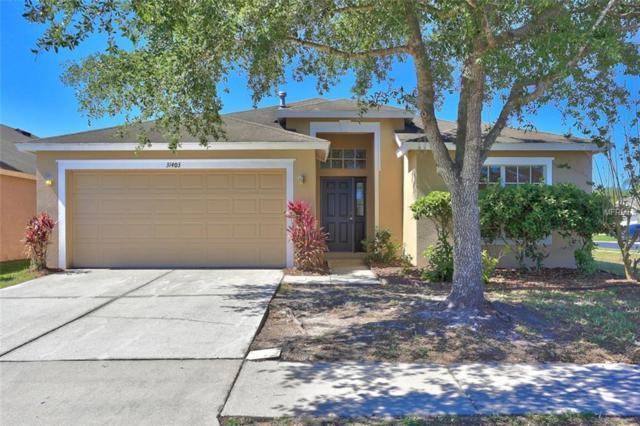 31403 Philmar Lane, Wesley Chapel, FL 33543 (MLS #T3167210) :: Team Bohannon Keller Williams, Tampa Properties