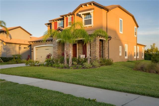 29008 Perilli Place, Wesley Chapel, FL 33543 (MLS #T3167350) :: Team Bohannon Keller Williams, Tampa Properties