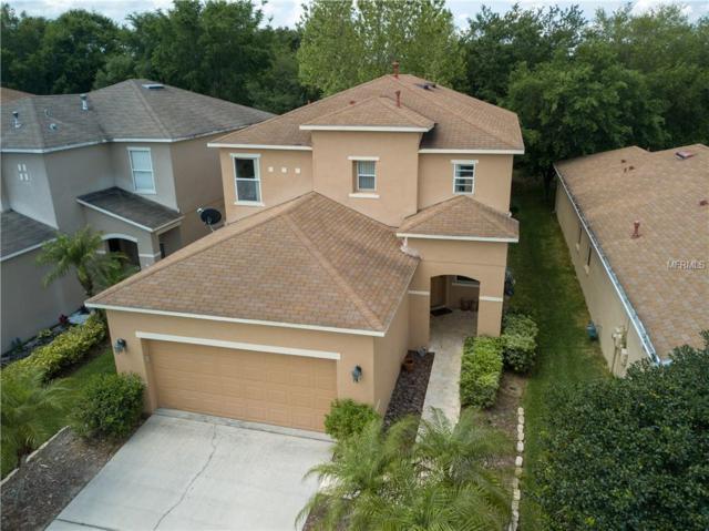 2433 Silvermoss Drive, Wesley Chapel, FL 33544 (MLS #T3167363) :: The Duncan Duo Team