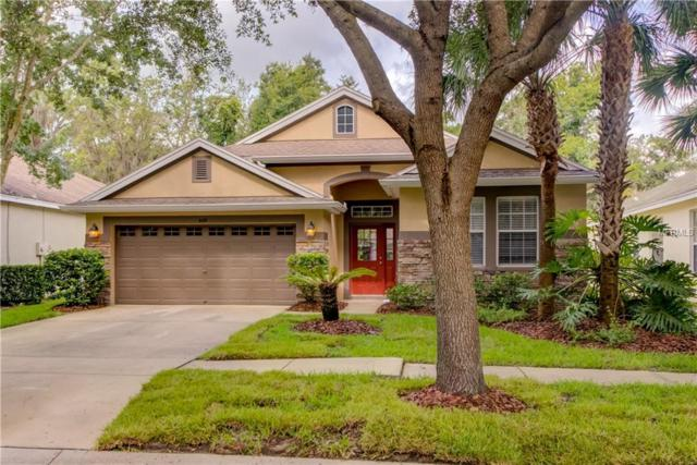 6119 Gannetwood Place, Lithia, FL 33547 (MLS #T3167394) :: Cartwright Realty