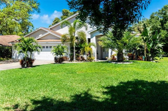 2994 Country Woods Lane, Palm Harbor, FL 34683 (MLS #T3167398) :: Premium Properties Real Estate Services