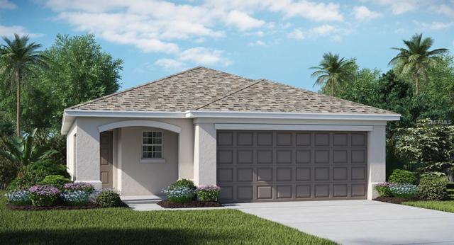 10108 Golden Wonder Lane, Riverview, FL 33579 (MLS #T3167418) :: The Duncan Duo Team