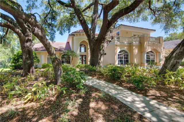 1682 Canopy Oaks Boulevard, Palm Harbor, FL 34683 (MLS #T3167674) :: Delgado Home Team at Keller Williams