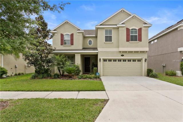 19240 Early Violet Drive, Tampa, FL 33647 (MLS #T3167705) :: Team Bohannon Keller Williams, Tampa Properties