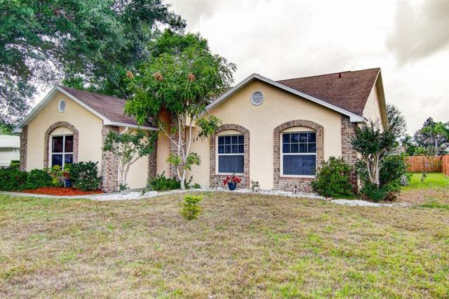 1402 Ventana Drive, Ruskin, FL 33573 (MLS #T3167720) :: Florida Real Estate Sellers at Keller Williams Realty