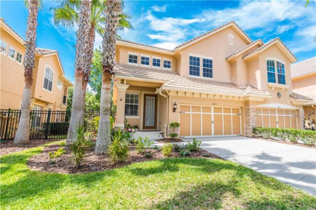 14445 Mirabelle Vista Circle, Tampa, FL 33626 (MLS #T3167759) :: Cartwright Realty