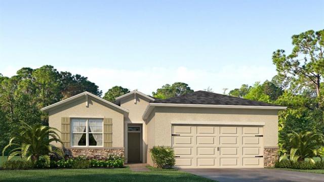 32837 Sand Creek Drive, Wesley Chapel, FL 33543 (MLS #T3167839) :: Cartwright Realty