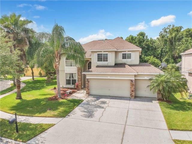 8275 Swann Hollow Drive, Tampa, FL 33647 (MLS #T3167871) :: Team Bohannon Keller Williams, Tampa Properties