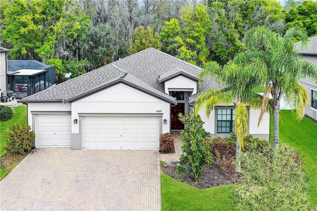 12369 Crestridge Loop, New Port Richey, FL 34655 (MLS #T3167874) :: Team Bohannon Keller Williams, Tampa Properties
