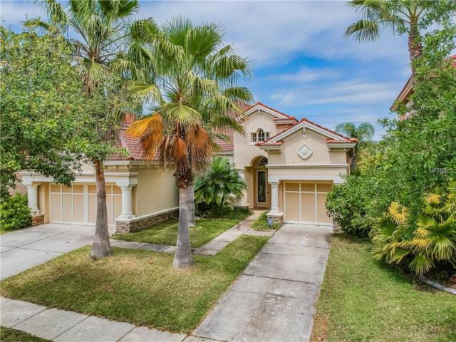 14764 San Marsala Court, Tampa, FL 33626 (MLS #T3167921) :: Griffin Group