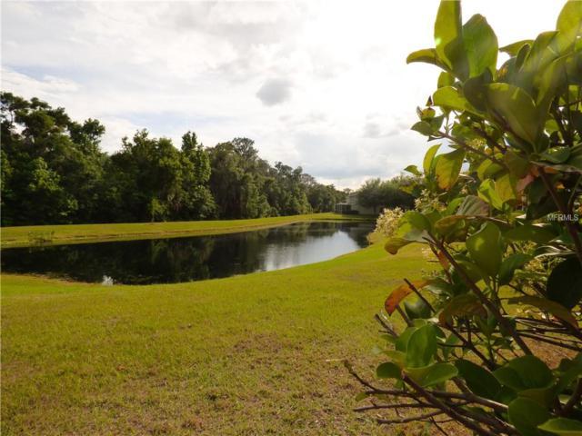 15961 Fishhawk View Drive, Lithia, FL 33547 (MLS #T3168000) :: Cartwright Realty