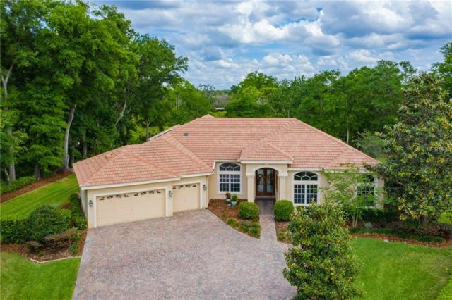 2509 Summer Snow Drive, Lutz, FL 33559 (MLS #T3168039) :: Mark and Joni Coulter | Better Homes and Gardens