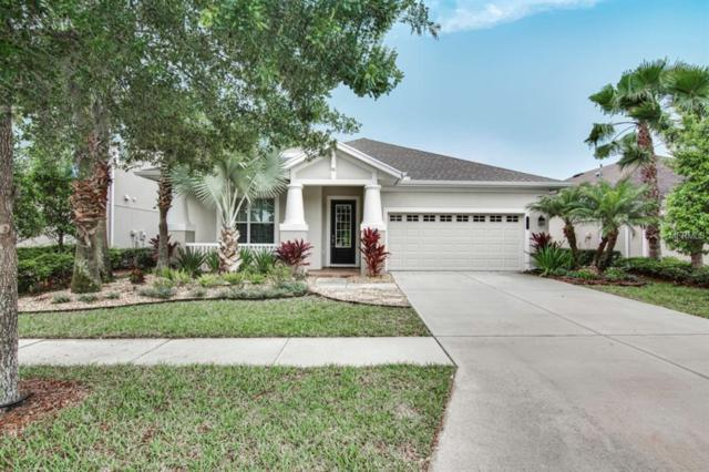 8114 Savannah Point Court, Tampa, FL 33647 (MLS #T3168091) :: Andrew Cherry & Company