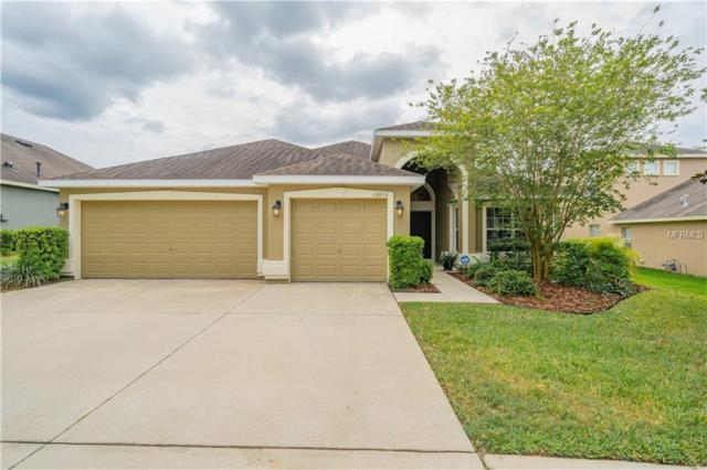 15653 Starling Water Dr, Lithia, FL 33547 (MLS #T3168197) :: Medway Realty