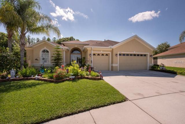 1508 Beaconsfield Drive, Wesley Chapel, FL 33543 (MLS #T3168239) :: Team Bohannon Keller Williams, Tampa Properties