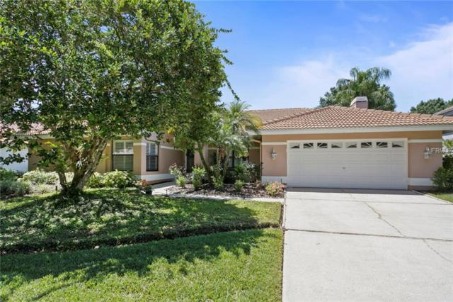 9115 Canberley Drive, Tampa, FL 33647 (MLS #T3168370) :: Medway Realty