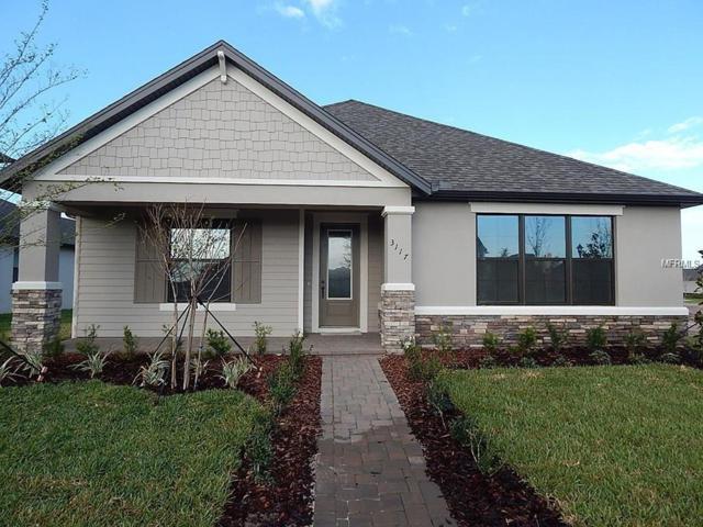 13231 Batten Lane, Odessa, FL 33556 (MLS #T3168381) :: Team Bohannon Keller Williams, Tampa Properties