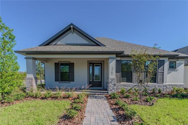 13243 Batten Lane, Odessa, FL 33556 (MLS #T3168384) :: Lovitch Realty Group, LLC