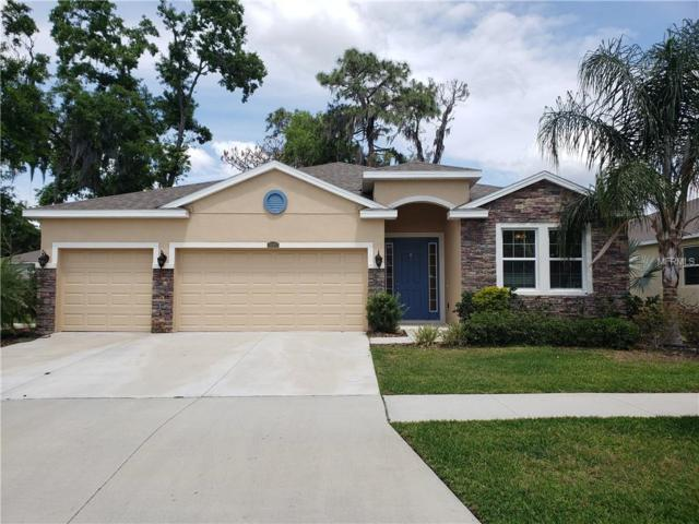 10402 Hampton Meadow Way, Riverview, FL 33578 (MLS #T3168415) :: Team Bohannon Keller Williams, Tampa Properties