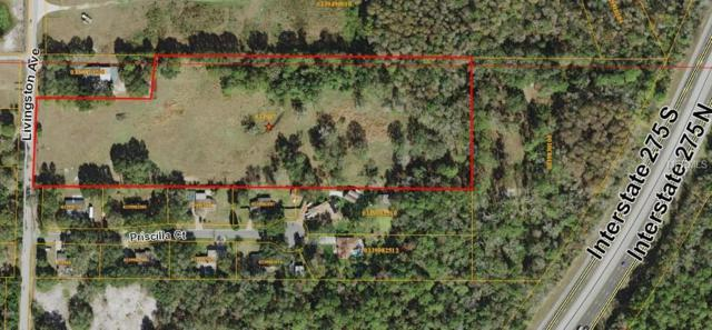 Livingston Avenue, Lutz, FL 33559 (MLS #T3168534) :: Mark and Joni Coulter | Better Homes and Gardens