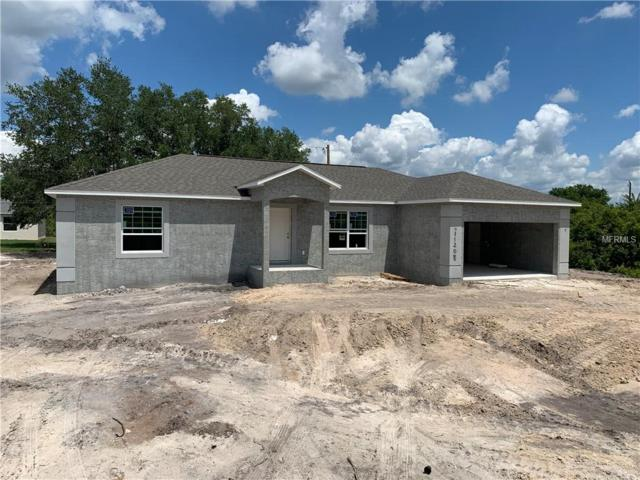 11208 Chalet Avenue, Englewood, FL 34224 (MLS #T3168576) :: Cartwright Realty