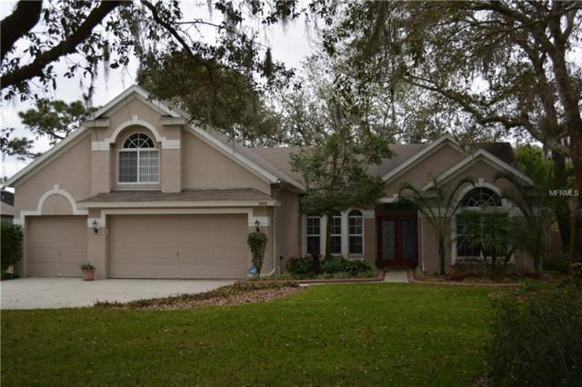 Address Not Published, Tampa, FL 33625 (MLS #T3168621) :: Mark and Joni Coulter | Better Homes and Gardens