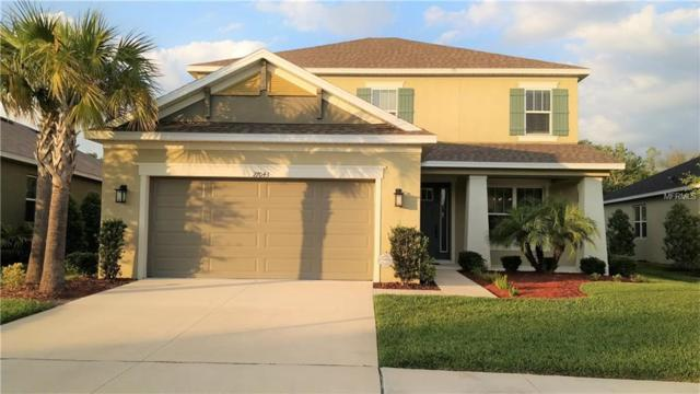 27043 Carolina Aster Drive, Wesley Chapel, FL 33544 (MLS #T3168689) :: NewHomePrograms.com LLC