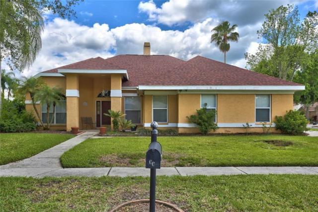 9201 Mill Circle, Tampa, FL 33647 (MLS #T3168698) :: Team Bohannon Keller Williams, Tampa Properties