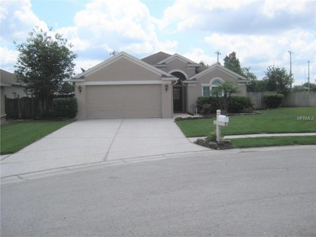 23142 Del Harbor Court, Land O Lakes, FL 34639 (MLS #T3168725) :: Team Bohannon Keller Williams, Tampa Properties