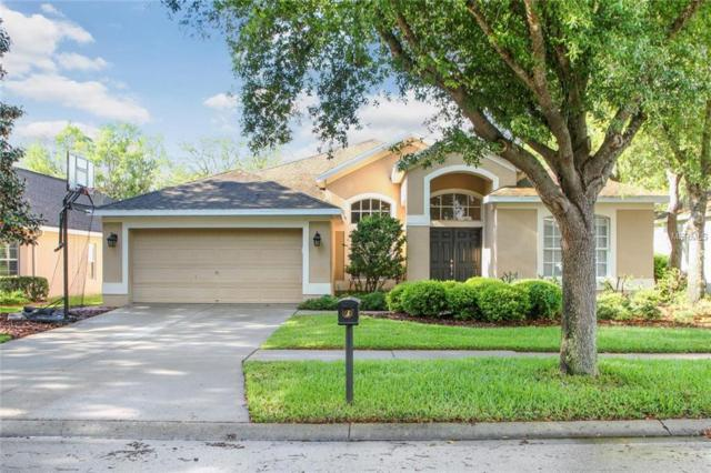 6105 Whimbrelwood Drive, Lithia, FL 33547 (MLS #T3168738) :: Medway Realty