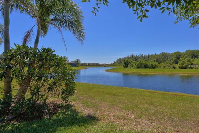 15830 Aurora Lake Circle, Wimauma, FL 33598 (MLS #T3168752) :: Baird Realty Group