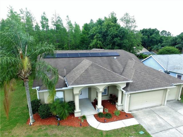 2130 Ground Squirrel Drive, New Port Richey, FL 34655 (MLS #T3168801) :: Griffin Group