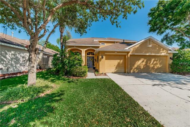 12031 Northumberland Drive, Tampa, FL 33626 (MLS #T3168806) :: Andrew Cherry & Company