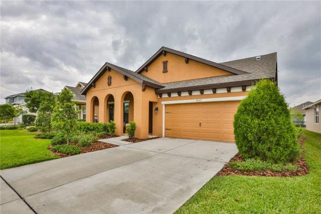 7027 Old Benton Drive, Apollo Beach, FL 33572 (MLS #T3168807) :: Premium Properties Real Estate Services