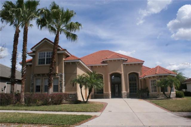 20115 Shady Hill Lane, Tampa, FL 33647 (MLS #T3168818) :: Andrew Cherry & Company