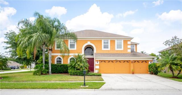 10332 Meadow Crossing Dr, Tampa, FL 33647 (MLS #T3168824) :: Team Bohannon Keller Williams, Tampa Properties