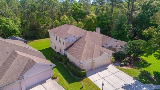 12901 Framingham Court, Tampa, FL 33626 (MLS #T3168850) :: Griffin Group
