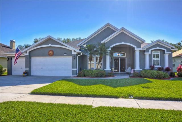 4409 Merrick Run Lane, Valrico, FL 33596 (MLS #T3168853) :: The Brenda Wade Team