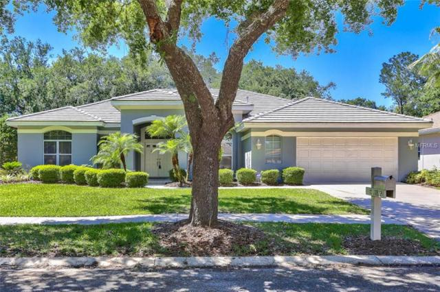 17812 Eagle Trace Street, Tampa, FL 33647 (MLS #T3168868) :: Team Bohannon Keller Williams, Tampa Properties