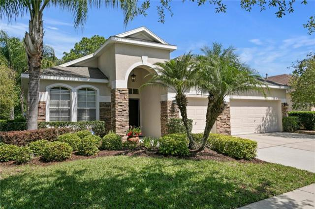 8202 Sparrow Perch Way, Tampa, FL 33647 (MLS #T3168880) :: Team Bohannon Keller Williams, Tampa Properties
