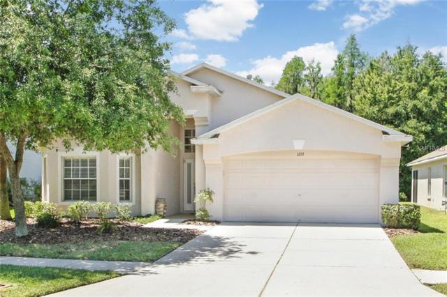 1213 Katahdin Court, Wesley Chapel, FL 33543 (MLS #T3168882) :: Team Bohannon Keller Williams, Tampa Properties