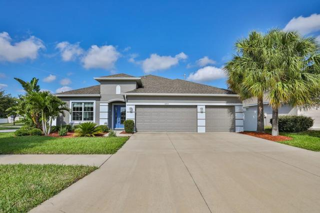 10223 Caraway Spice Avenue, Riverview, FL 33578 (MLS #T3168951) :: Cartwright Realty