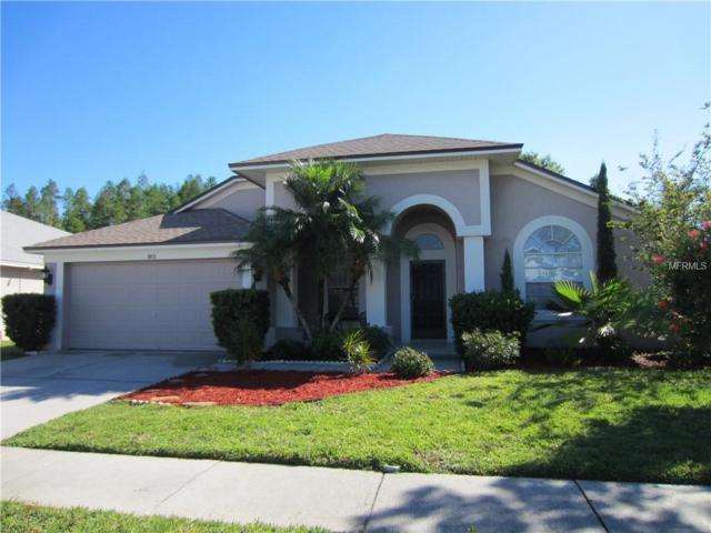 18113 Palm Breeze Drive, Tampa, FL 33647 (MLS #T3168953) :: Team Bohannon Keller Williams, Tampa Properties