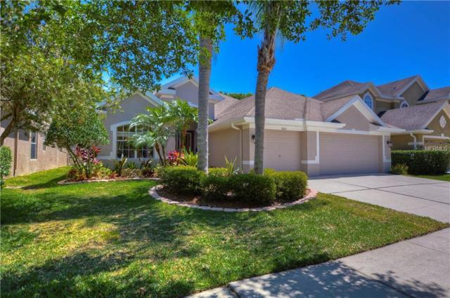 11605 Renaissance View Court, Tampa, FL 33626 (MLS #T3168973) :: Andrew Cherry & Company