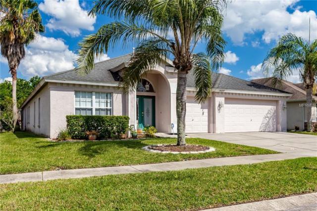 18209 Collridge Drive, Tampa, FL 33647 (MLS #T3168983) :: Team Bohannon Keller Williams, Tampa Properties