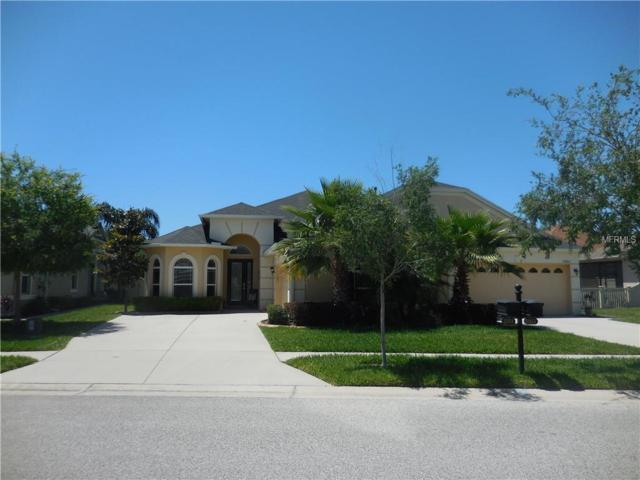 20858 Amanda Oak Court, Land O Lakes, FL 34638 (MLS #T3169001) :: Advanta Realty