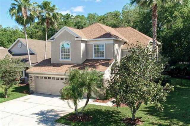 9642 Gretna Green Drive, Tampa, FL 33626 (MLS #T3169003) :: Team Bohannon Keller Williams, Tampa Properties