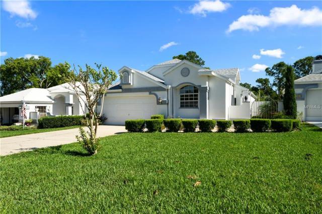 10479 Casa Grande Circle, Spring Hill, FL 34608 (MLS #T3169061) :: Cartwright Realty