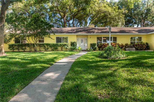 616 Halliewood Avenue, Temple Terrace, FL 33617 (MLS #T3169064) :: The Duncan Duo Team
