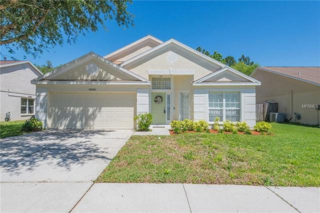 30005 Morningmist Drive, Wesley Chapel, FL 33543 (MLS #T3169135) :: Team Bohannon Keller Williams, Tampa Properties